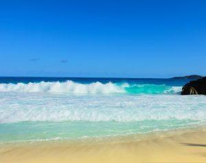 Lee más sobre el artículo Aprovecha las vacaciones